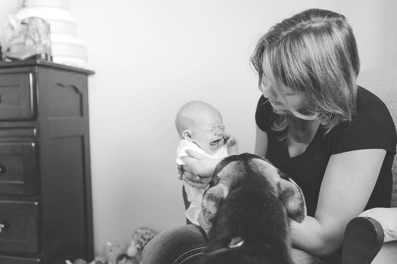 Aiden McFarland Newborn ~ 8.2014-272.jpg