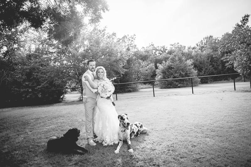 2014 09 14 Waddle Wedding - Bride and Groom-796.jpg