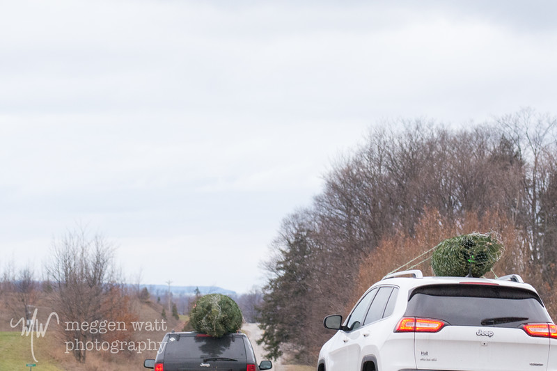 TLR-20181126-6214 Leaving the Christmas Tree Farm, Lake Michigan in Background
