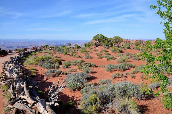 Canyon-Lands-National-Park-UT