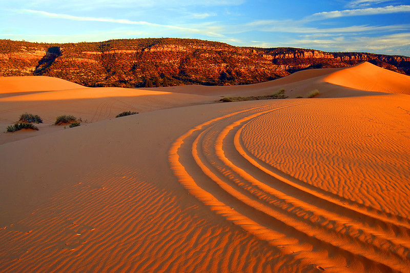 Coral Pink Sand Dunes - Four Wheeler Tracks-Tyler Cornell - KCOT.jpg