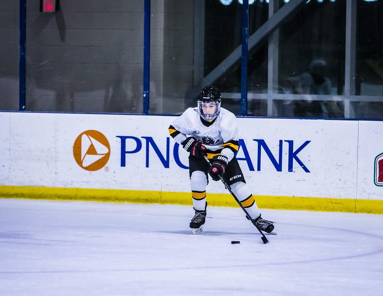 Bruins-143.jpg