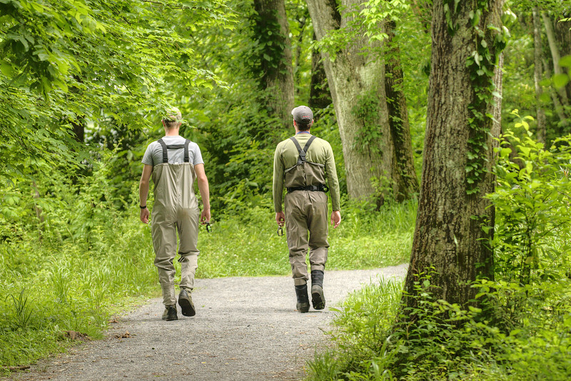 Two men walk along the path on Osceola Island near Bristol, TN on Sunday, June 9, 2013. Copyright 2013 Jason Barnette