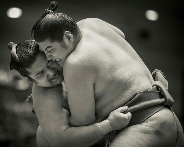 Osaka Sumo 220313 19 .jpg