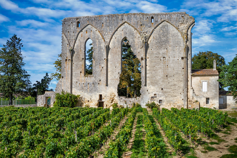 Vineyards and ruin of Saint-Emilion.