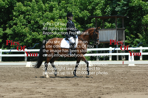 Dressage at Lexington - 25th Anniversary - July 2014