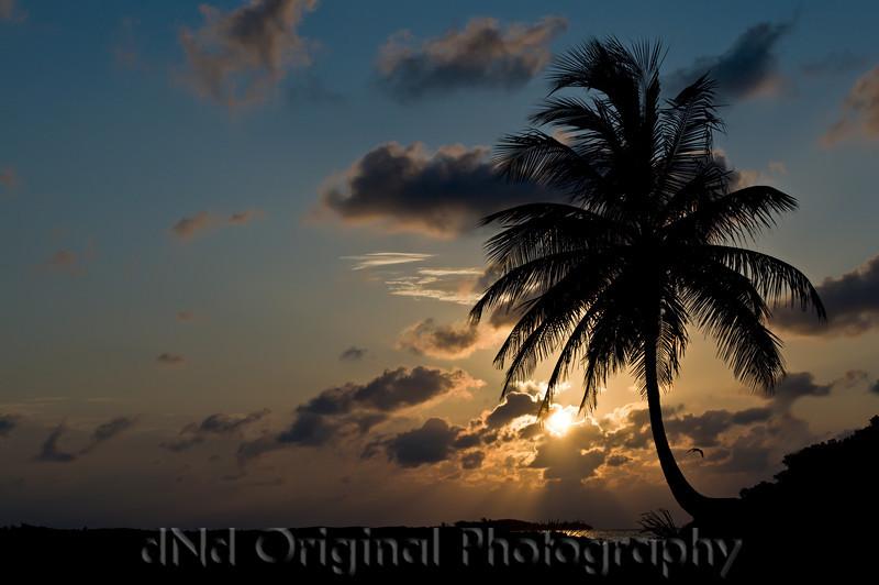 098 Bahamas 2008 - 2nd Sunrise.jpg