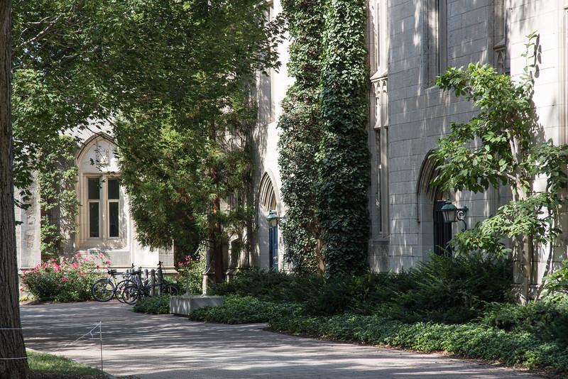 Princeton-0379.jpg