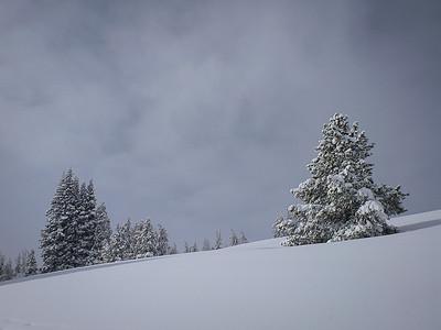 2014-02-Snowboarding
