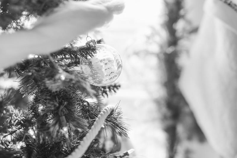 43_Ollie-DecemberBW.jpg