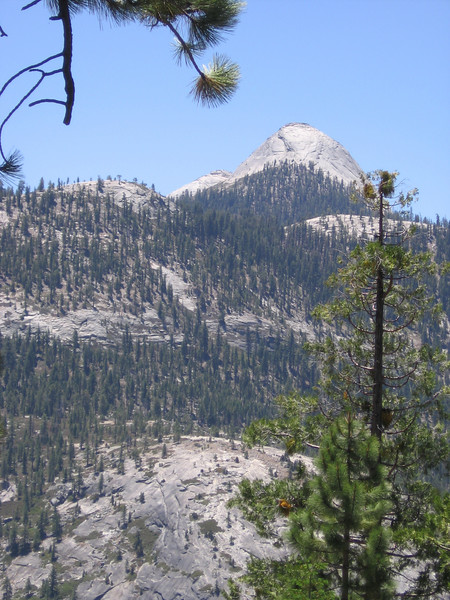 View to the southwest of numerous forested domes in Merced River drainage.