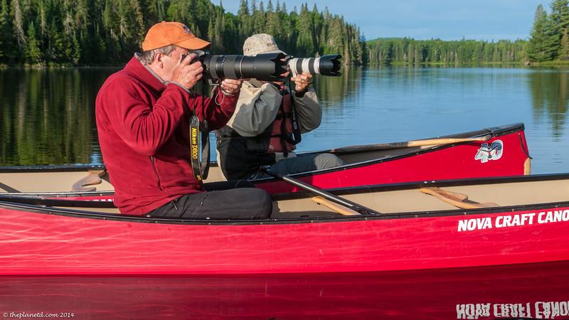 moose-safari-algonquin-park-ontario-23.jpg