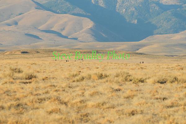 Canyonlands D3