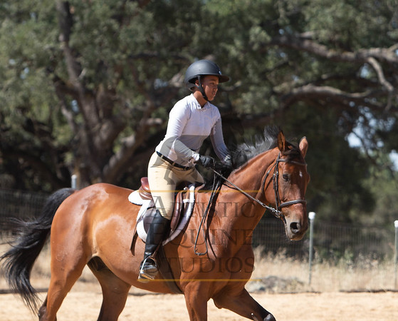 Rider 106- Hunters