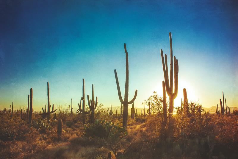 Arizona III