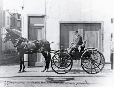 Staff Vehicles
