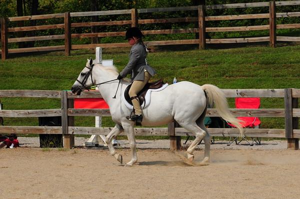121-Pony Hunter US