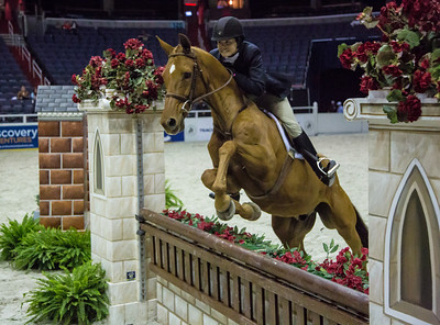 Washington International Horse Show (2012)