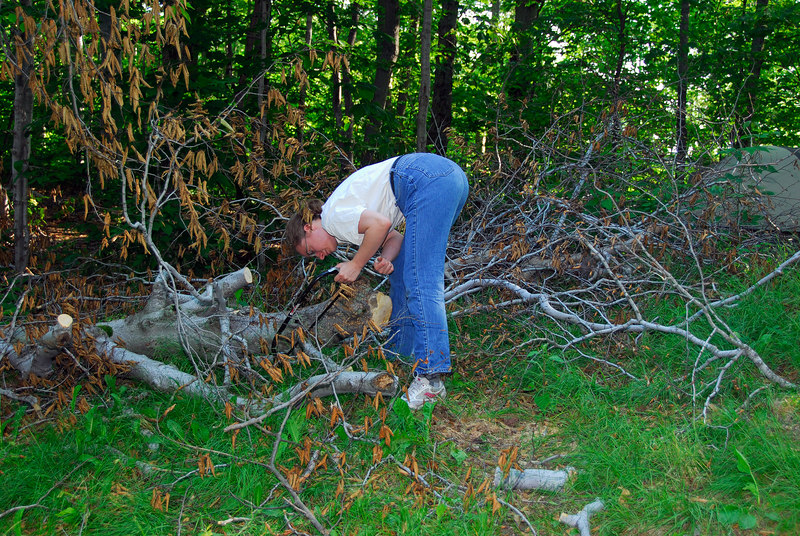 Darleen works on cutting up the fallen tree