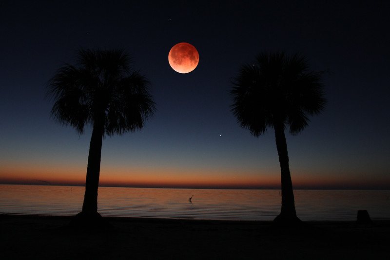 Bloodmoon beach