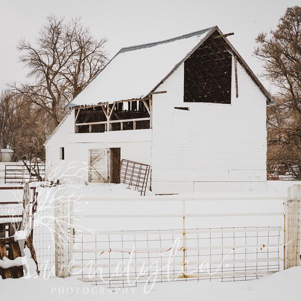 wlc barns 01172020452020.jpg
