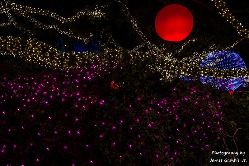 Houston-Zoo-Lights-3141.jpg