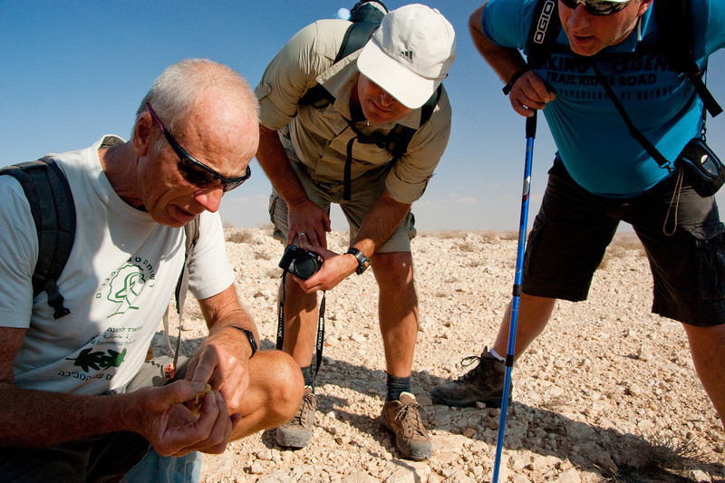 Lifetime Expeditions-Negev 2011-06526.jpg