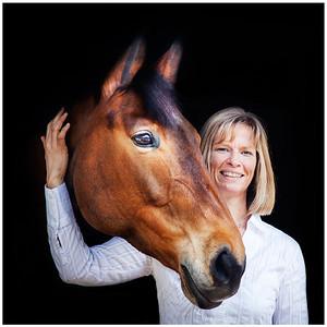 Equine Clients