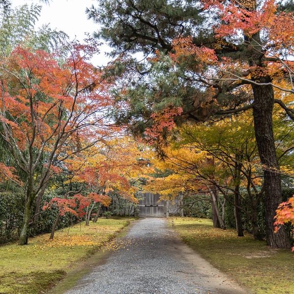 Kyoto12042018_134.jpg