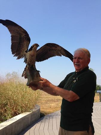 Birding 2013 September