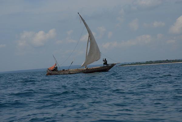 Zanzibar Island Trips