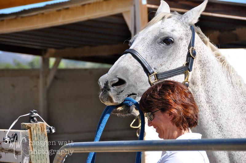 EB&Horses-033.jpg