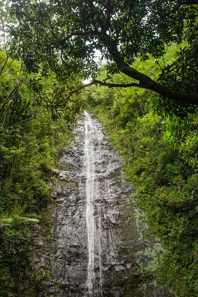 Hawaii2019-846.jpg