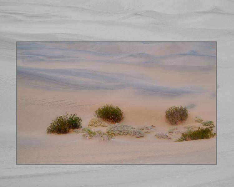 painted sand LR.jpg