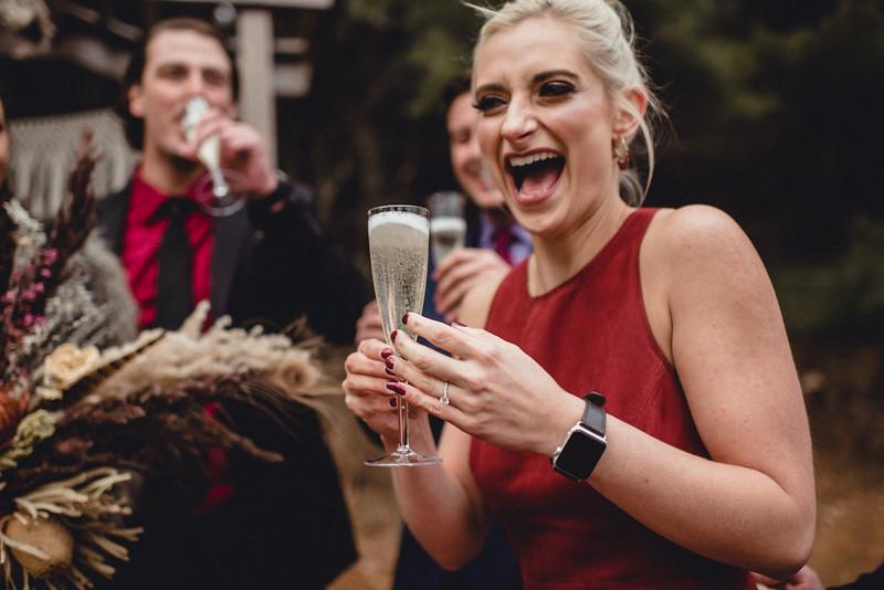 Requiem Images - Luxury Boho Winter Mountain Intimate Wedding - Seven Springs - Laurel Highlands - Blake Holly -1237.jpg