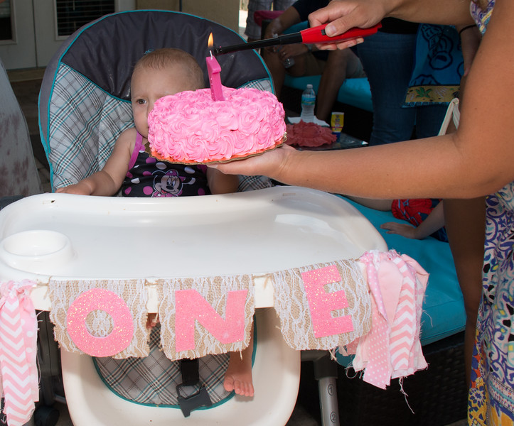 Lila's 1st Bday Party-194.jpg