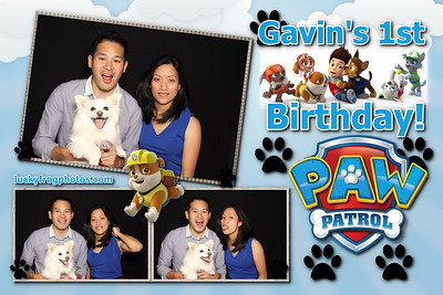 Gavin's 1st Birthday