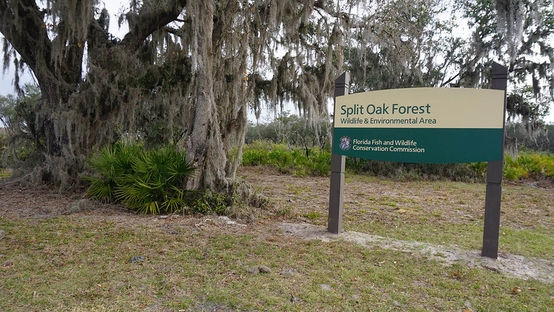 Official FWC sign at trailhead