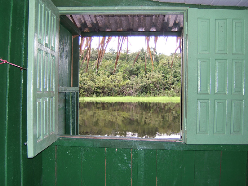 """Day 2 - Manaus - The view from our """"jungle lodge"""" room. No mosquitos on the Rio Negro!"""