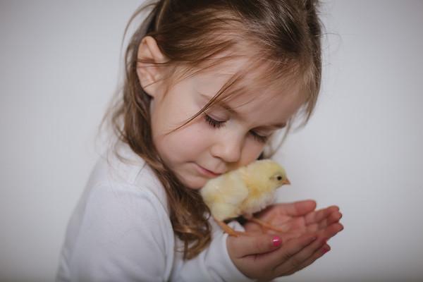 Aubrey {Chicks 2018}