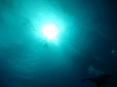 Virgin Gorda Scuba Wreck of the Rhone with Video Links with Dive BVI 2010