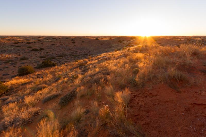 Sunset In The Kalahari, South Africa