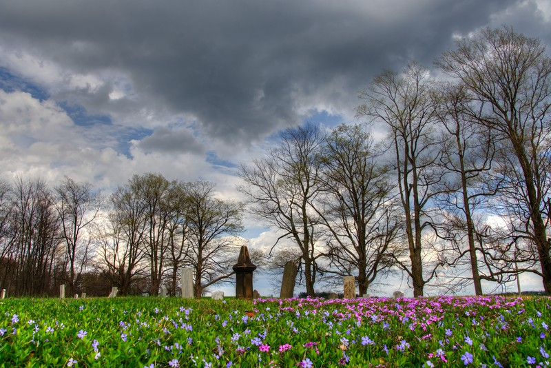 Forgetmenots-cemetery-hartville4.jpg