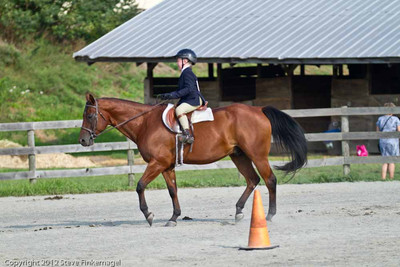 Bradford County Roundup Hunt Seat Equitation on the Flat JR