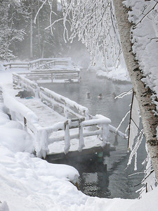 Liard Hot Springs in Winter