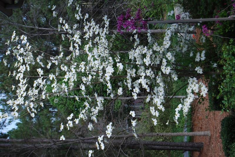 April_2008_013.jpg