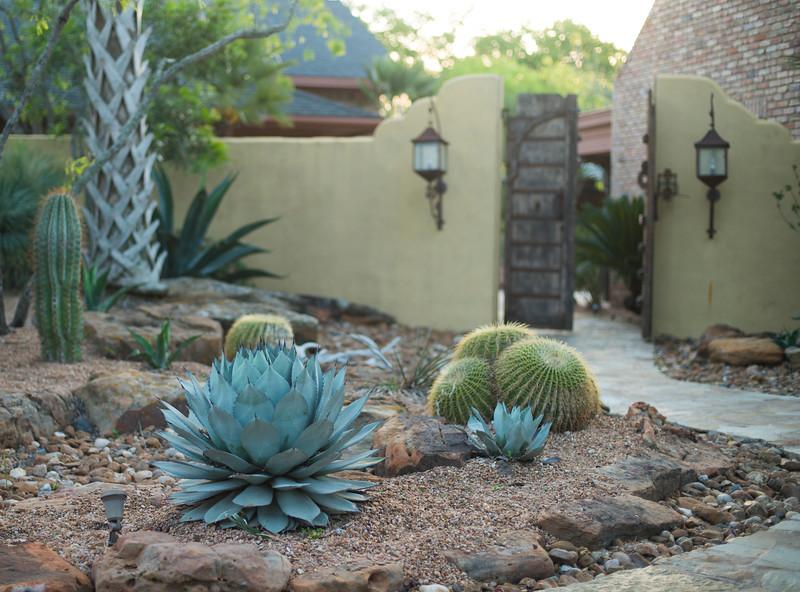 htx-cactus-space024.jpg