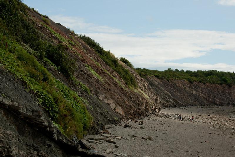 The Joggins Fossil Cliffs near Bay of Fundy in Nova Scotia