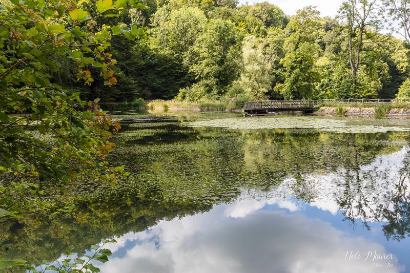 2018-07-11 Ermitrage Arlesheim + Park im Grünen Münchenstein 0U5A4001.jpg