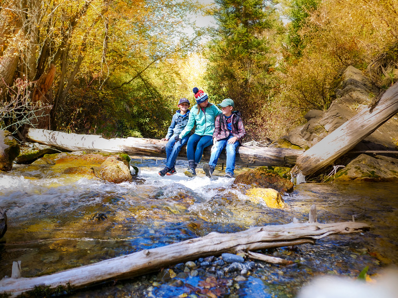 2019 Hike Creek Hike-241.jpg